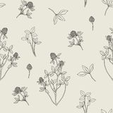 Beautiful floral seamless pattern with red clover on light background. Meadow flowers and leaves hand drawn in retro Stock Image