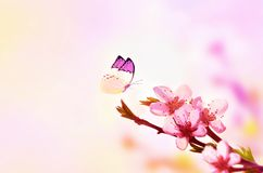Beautiful floral spring abstract background of nature and butterfly. Branch of blossoming peach on light pink sky background. For stock photo