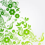 Beautiful floral spring background Stock Photos