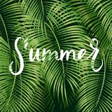 Beautiful floral summer. Pattern background with tropical palm leaves and lettering summer Royalty Free Stock Image