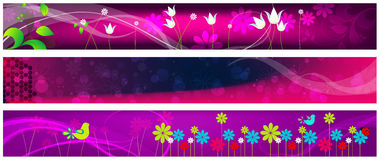 Beautiful floral web banners Royalty Free Stock Photography