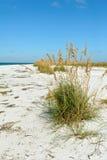 Beautiful Florida Coastline Stock Photography