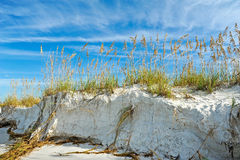 Beautiful Florida Coastline. Beautiful Sand Dunes and Sea Oats on the Coastline of Anna Maria Island, Florida stock photo
