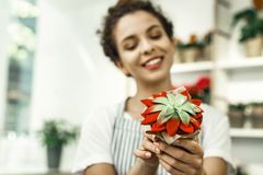 Beautiful florist smiling while holding beautiful green succulent. Green succulent. Young experienced beautiful florist smiling while holding beautiful green stock image