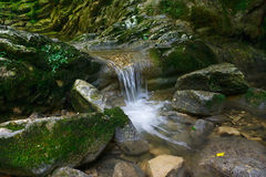 Beautiful flow of water flowing between stones Royalty Free Stock Images