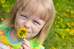 A beautiful flower. Girl smelling a flower smell of summer stock photography