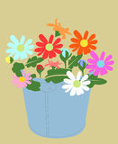 Beautiful flower. Beautiful different color  flower, illustration Royalty Free Stock Photo