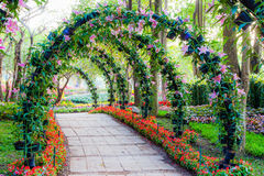 Beautiful flower arches with walkway in ornamental plants garden Stock Photos