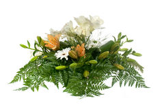 Beautiful flower arrangement Stock Photos