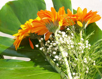 Beautiful flower arrangement. With lily of the valley Stock Photography