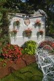 Flowers in backyard. Royalty Free Stock Photo