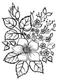 Beautiful flower arrangement, a black outline on a white Royalty Free Stock Images