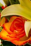 Beautiful flower arrangement Royalty Free Stock Photos
