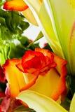 Beautiful flower arrangement Stock Photos