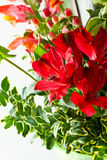 Beautiful flower arrangement Royalty Free Stock Photography