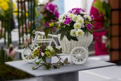 A beautiful flower arrangement set in a model tricycle on display at the 2018 Annual Spring festival in Belfast Northern ireland. This show provides excellent royalty free stock photography