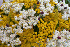 Beautiful flower arrangement Stock Photo