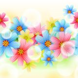 Beautiful Flower Background Stock Photos