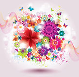 Beautiful Flower Background. Stock Images