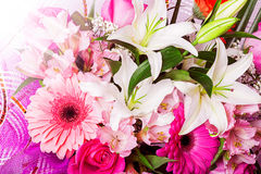 Beautiful flower background. Royalty Free Stock Photography