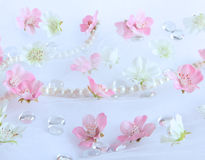 Beautiful flower background. Beautiful white and pink flower background stock photo