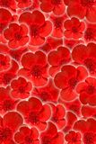 Beautiful flower background. Beautiful red flower background for your design stock photo