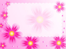 Beautiful flower background Royalty Free Stock Photography