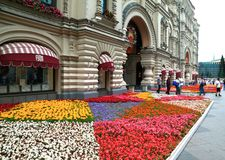 Beautiful Flower Bed In Central Street Of The City Of Moscow Stock Photos