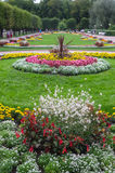 Beautiful flower bed Royalty Free Stock Photography