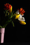 Beautiful flower bouquet of colorful tulips in pink vase on black background Stock Photo