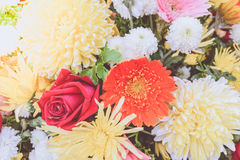 Beautiful flower in a bouquet Stock Photos