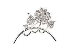 Beautiful flower brooch Stock Photography