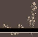 Beautiful flower card. Illustration of vector greeting card with flowers vector illustration