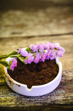 Beautiful flower and coffee ground on vintage wooden background Stock Image