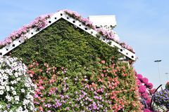 Beautiful flower covered house royalty free stock photo