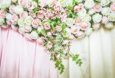 Beautiful flower Stock Photography