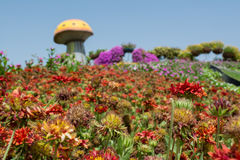 Beautiful flower field with giant mushroom Stock Photography