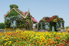 Beautiful flower field with two decorated houses Royalty Free Stock Photos