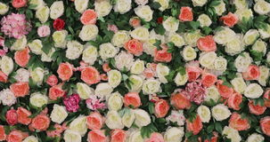 Beautiful flower field yellow green white pink purple and red, lot of roses and Peonies stand in pots buckets, a Large stock video footage