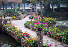 Beautiful flower garden with bamboo path Royalty Free Stock Image