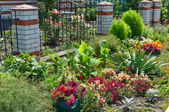 Beautiful flower garden in front of House Stock Photo