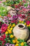 Beautiful flower garden. Royalty Free Stock Photography