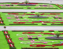 Beautiful flower garden in Schonbrunn palace - Vienna Austria Royalty Free Stock Photos