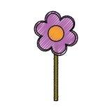 Beautiful flower gardening Stock Image