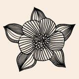 Beautiful flower, Hand drawn Royalty Free Stock Photos