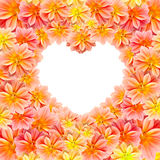 Beautiful flower with heart shape Stock Images