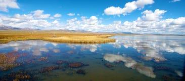 Beautiful Flower Lake Sichuan Royalty Free Stock Photo