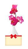 Beautiful flower Orchid, pink phalaenopsis in vase and card Stock Photography
