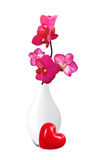 Beautiful flower Orchid, pink phalaenopsis in vase Royalty Free Stock Image