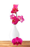 Beautiful flower Orchid, pink phalaenopsis in vase Stock Photo